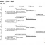 Результаты кубка Петроградского клуба Кэндо 2013 - Дан-кап